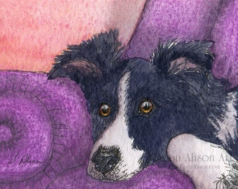 Border Collie dog 5x7 8x10 11x14 art print outraged sheepdog human wants his chair damn nerve! from watercolour painting by Susan Alison