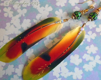 FAERIE FEATHER Amazon Parrot Feather & Lampwork Earrings