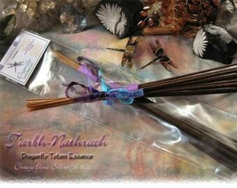 DRAGONFLY Totem Ceremonial Stick Incense 12 pk - SALE