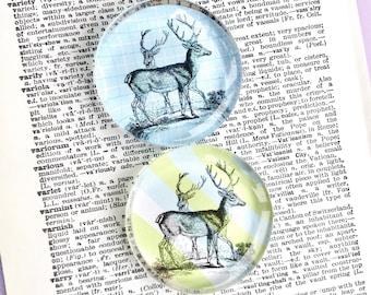 Deer Magnet - Animal Magnet - Jumbo Glass Magnet of Deer - Woodland Magnet - Deer with Antlers - Refrigerator Magnet - Office Magnet