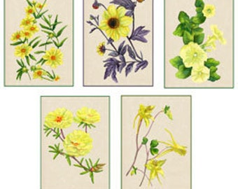 Set of 10 Floral Greeting Cards Yellow Flowers