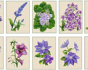 Set of 10 Floral Greeting Cards Blue and Purple