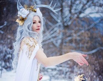 8x10 Photo Art Print: Winter Fawn 1