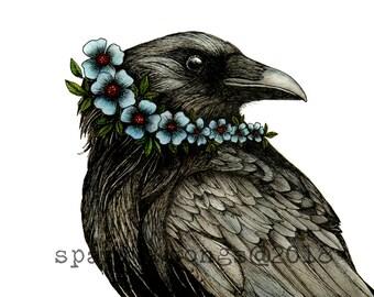 Card Crow