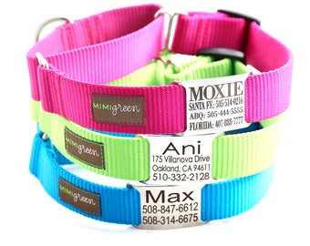 Martingale Dog Collar - Nameplate Dog Collar Personalized with 25 Nylon Colors to Choose From -- Buckle-less Martingale Dog Collar