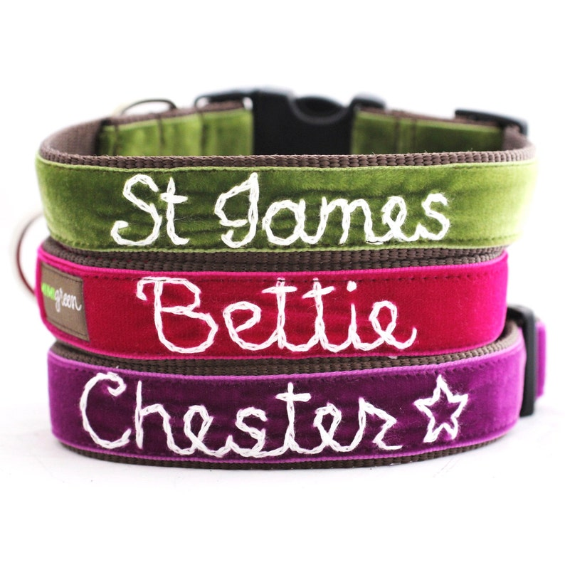 Personalized Velvet Dog Collar 20 colors available  Custom Bettie