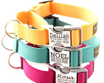 Buckle Martingale Dog Collar - Personalized with 27 Nylon  Webbing Colors to Choose From - Limited Slip Dog Collar w Buckle