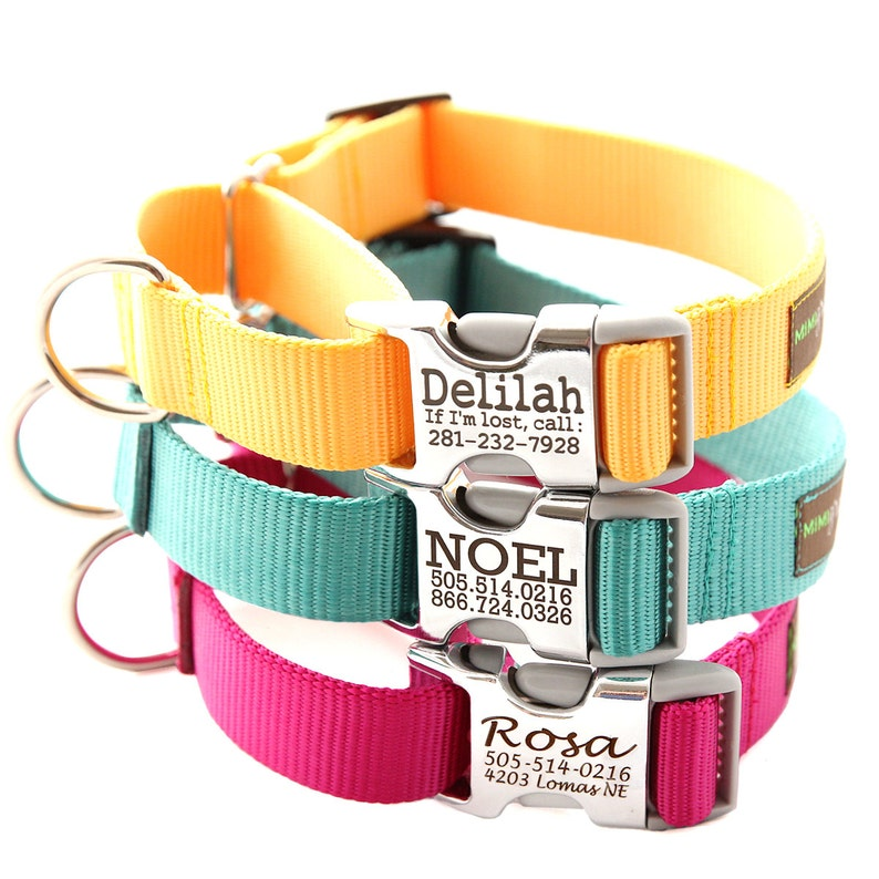 Buckle Martingale Dog Collar  Personalized with 27 Nylon image 0