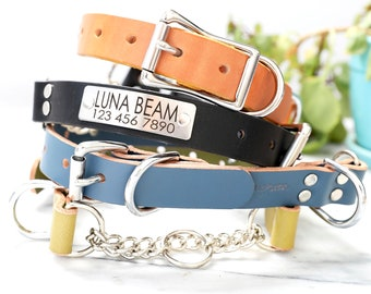 Leather Martingale Dog Collar w BUCKLE, Engraved Martingale Leather Dog Collar, Nameplate Personalized Martingale Dog Collar, Limited Slip