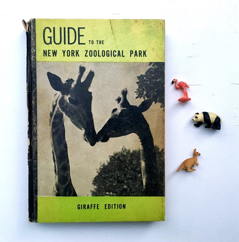 Guide to the New York Zoological Park Vintage Book Zoo image 0