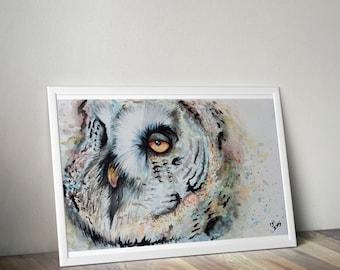 DIGITAL DOWNLOAD Colorful Owl, bird watercolor printable home decor wall art