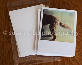 Dogs - set no. 1 - Set of 4 Blank Photo Note, Greeting, Thank You, or just because Cards w/Envelopes