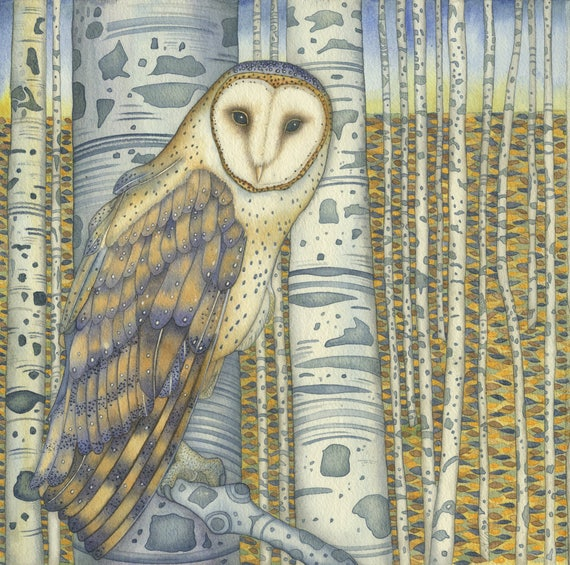 Single Greetings Card of an original painting: 'Barn Owl in the Birch Wood'.
