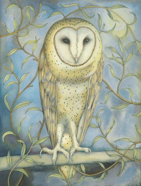 Single Greetings Card of an original painting: 'Barn Owl Amongst the Willow'