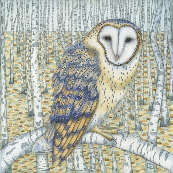 Single Greetings Card of an original painting: 'Barn Owl Among the Birch Trees'.