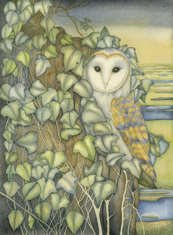 Fine art print of an original painting: 'Barn Owl at Stiffkey'