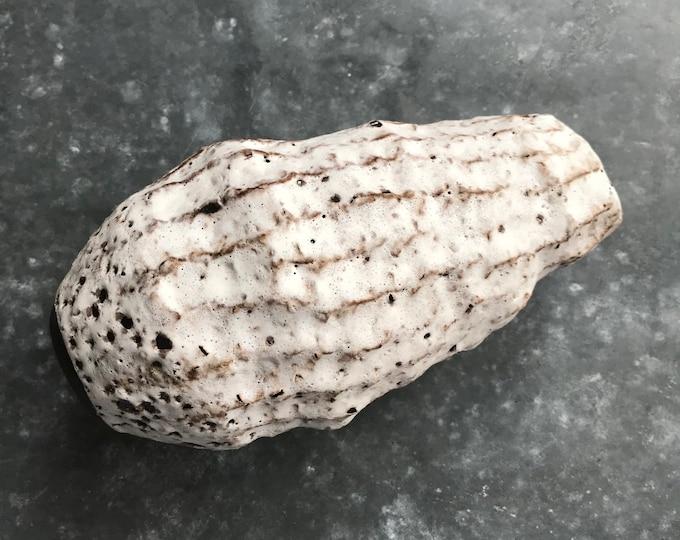 Paul Lowe Ceramics Coral Vase