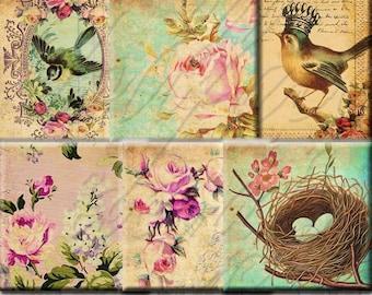 INSTANT DIGITAL DOWNLOAD - Antique Victorian Bird Queens Wallpaper Roses - 1 Inch Squares - Inchies - Scrabble Tile Pendants Necklaces