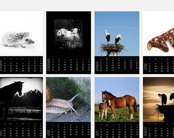 Desk Calendar 2018 -  Bird and animal calendar for nature lover - 5x7 prints - Mini wall calendar - Wildlife friends photography