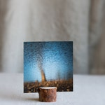 Rustic home decor Water photo Denim blue and natural brown wall art Tree photography Fine art print Abstract soft landscape Reflections