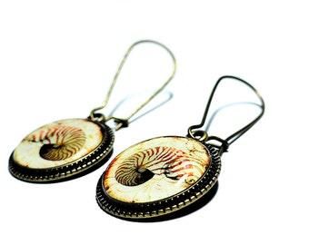 Nautilus Shell Earrings, Dangle Earrings, Handmade Jewelry, Nautilus Jewelry, Resin Earrings, Handmade Earrings, Beach Jewelry