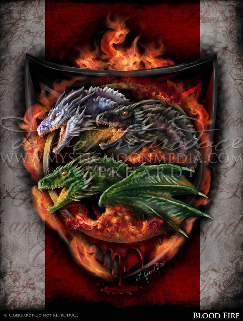 House TARGARYEN decor fire and blood gift Game of Thrones flag curtain daenerys