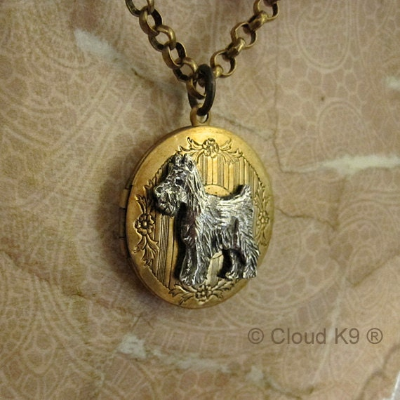 WELSH HORSE PONY PHOTO SILVER  PENDENT NECKLACE 22 INCHES GIFT BOX BIRTHDAY
