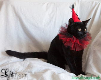 pet cat dog witch clown santa hat tutorial pattern with free etsy