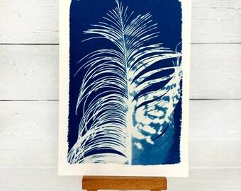 Feather Art Print, Original Cyanotype, Ibis Feather, Art Postcard