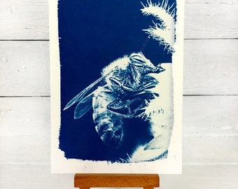 Bee Art Print, Original Cyanotype, Bee Picture, Save the Bees