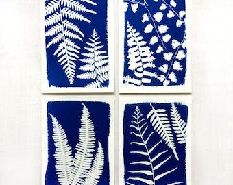 Fern Print Set, Botanical Art Cyanotypes, Nature Prints