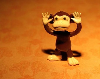 Another Little Monkey With A Big Tale To Tell - Photograph - Various Sizes