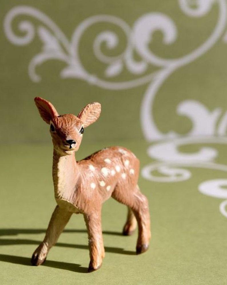 Darling Deer  Photograph  Various Sizes image 0
