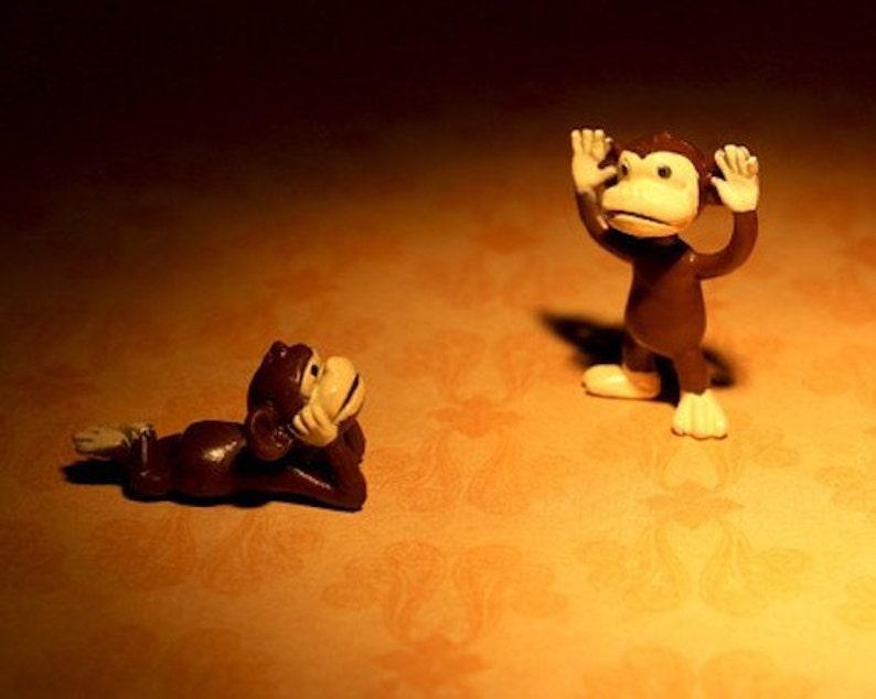 Little Monkey Tells A Big Tale  Photograph  Various Sizes image 0