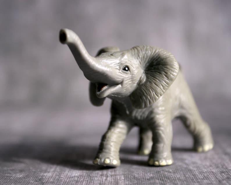 Happy Goodluck Elephant  Photograph  Various Sizes image 0
