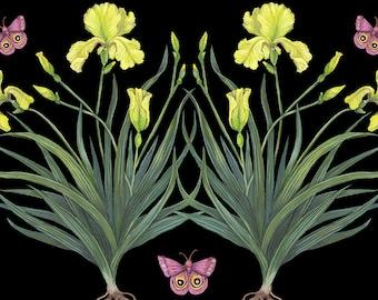 Yellow Irises - Print