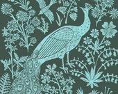Peacock Garden - Print