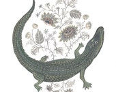 Alligator Flora - Print