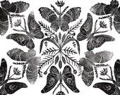 Butterflies Converge - Print