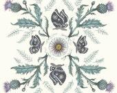 Thistle Moth - Print