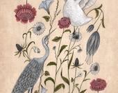 Swan and Crane - Print