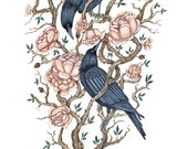 Crows in the Roses - Print
