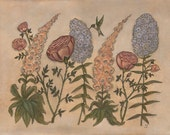 Garden Row - Print