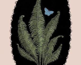 Ostrich Fern - Print
