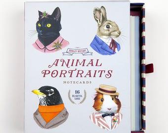 Note cards - Blank Card Set - Notecard Set - Animal Portraits - Berkley Illustration - Ryan Berkley - Cat stationary - Cute stationary