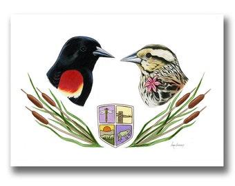 Red-winged Blackbird Couple art print - Anniversary Gift - Wedding Gift - Cattails - Blackbirds - Ryan Berkley Illustration - Birds