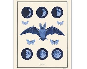 Natural Values print - Explore - Night Sky - Scientific Illustration - Nature Art - Inspirational - Ryan Berkley - Wall Art - Bat - Moons