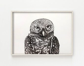 """""""Spotted Owl"""" - original ink drawing"""