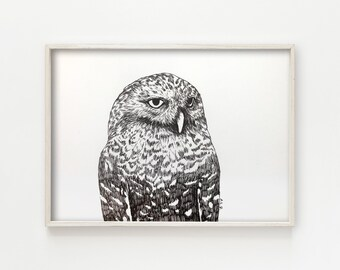 """Snowy Owl"" - original ink drawing"