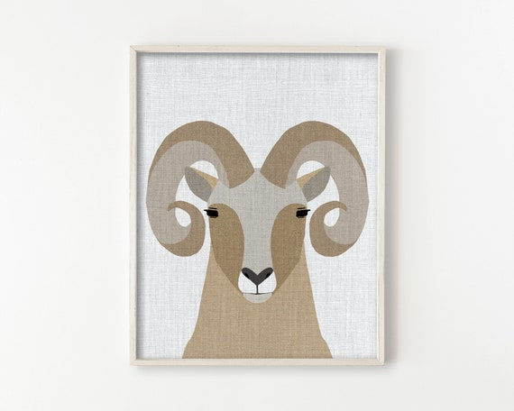 Bighorn Sheep - Modern Animals Series